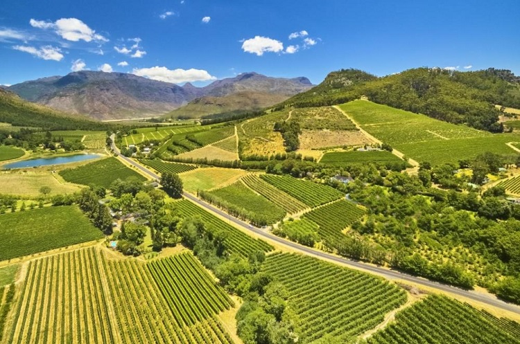 Breede River Valley South Africa